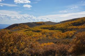 Fall colors on Boulder Mountain