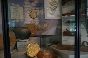 Human History Museum Display