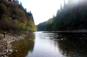 South Fork of the Eel River