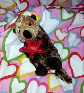 Stuffed baby sea otter