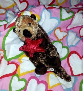 Stuffed baby sea otter