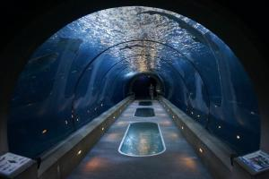 Passages of the Deep