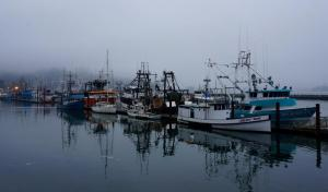 Newport fishing fleet