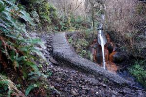 Trail around drainage sluice